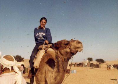 In the Sinai desert, in Israel.